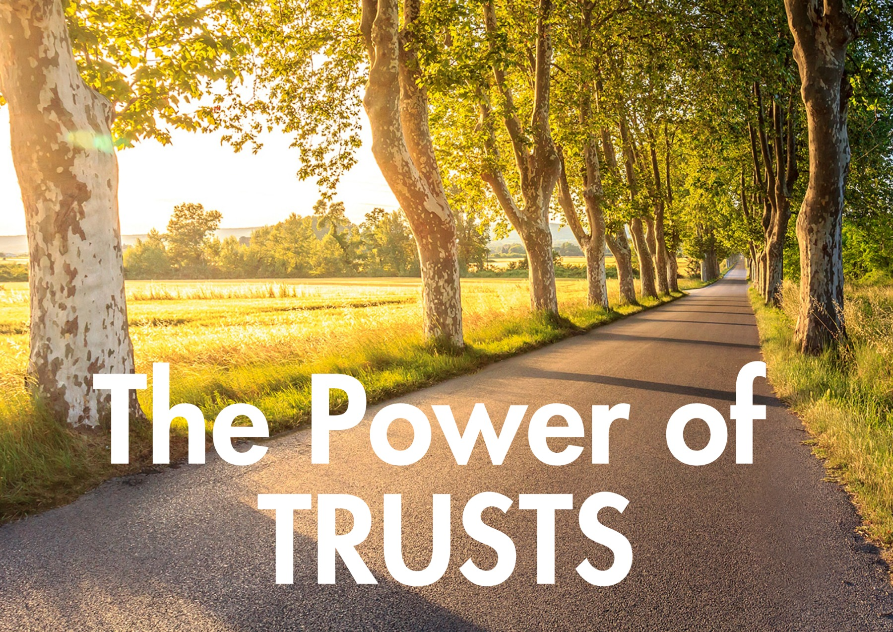 The Power Of Trusts